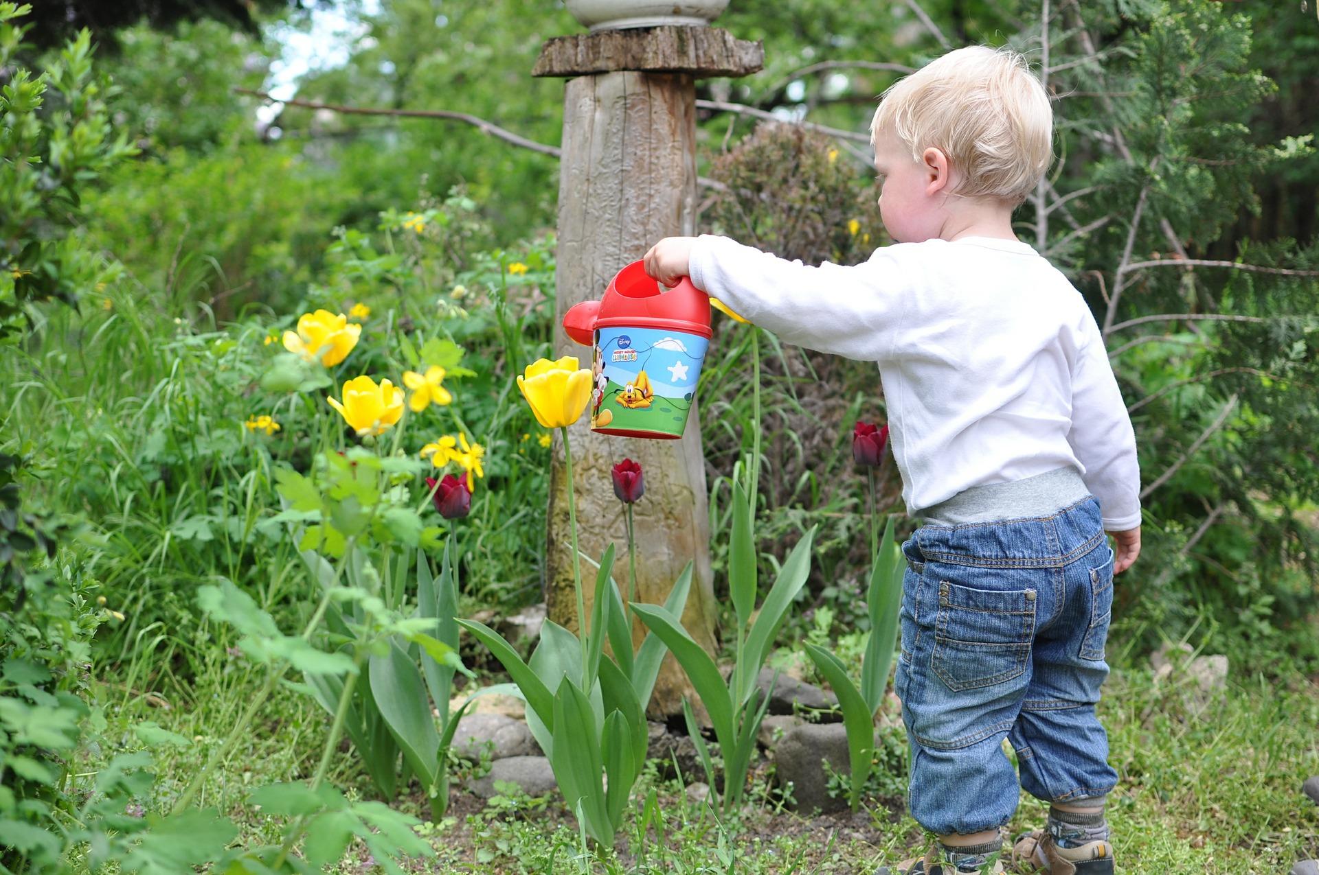 Mt. Waddington Literacy News: April 23, 2021